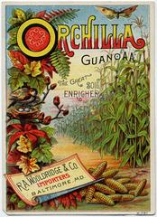 Orchilla Guano