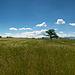 Vue vers Peissy depuis le Grand Bois (7 images)