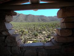 Saguaro National Park West