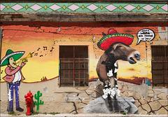 """Setúbal, mural: """"Vozes de Zorro não chegam ao céu"""""""