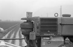 Yanmar pump
