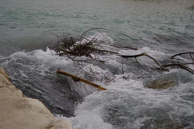 Drôme, Allex, réserve des Ramières