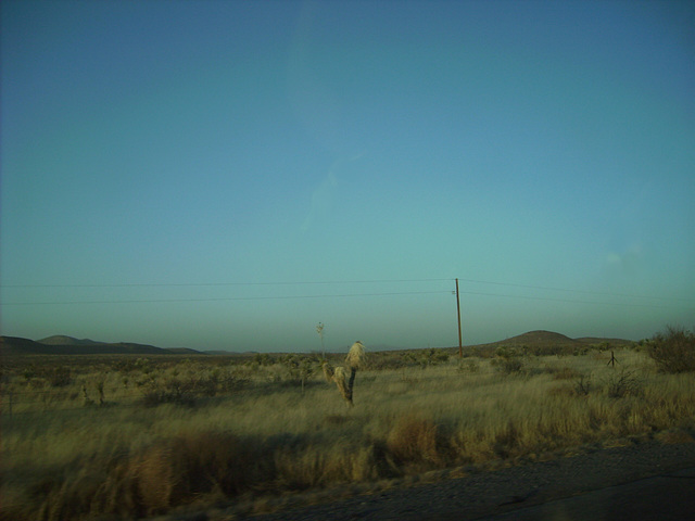 Columbus Electric Cooperative (CEC) 7,620V - near Lordsburg, NM