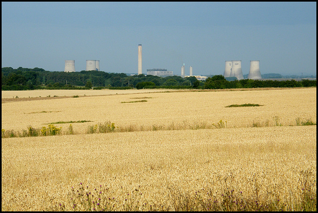 fields of Didcot