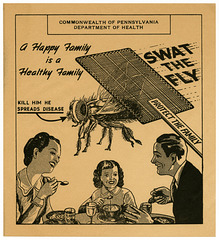 Swat the Fly, Protect the Family