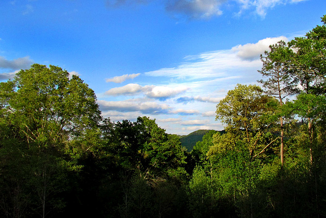 Big Ridge