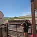 0504 130046 Verde Canyon Railroad