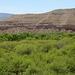 0504 131146 Verde Canyon Railroad