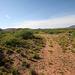 0504 162634 Verde Canyon Railroad