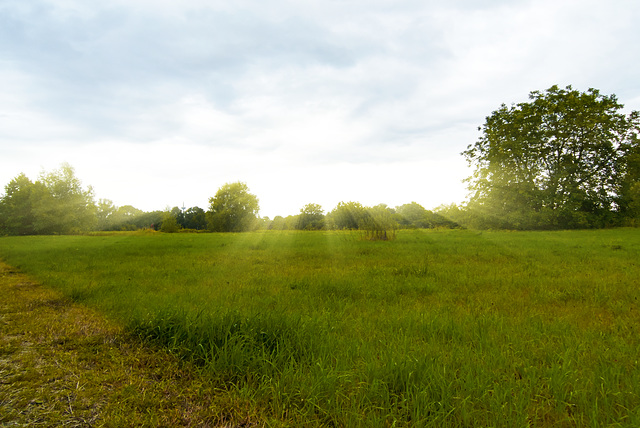 landschaft-1190068-co-29-06-14 1