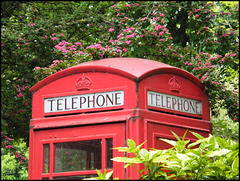 phone box in May
