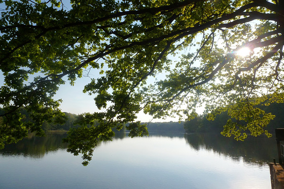 Meditation am See - meditado ĉe lago