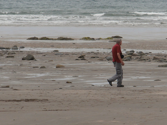 Mickey walking on the beach
