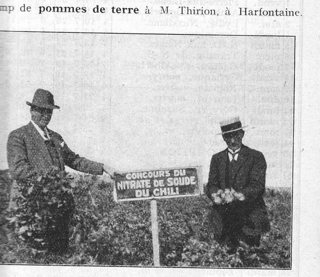 concours nitrate de soude 1929