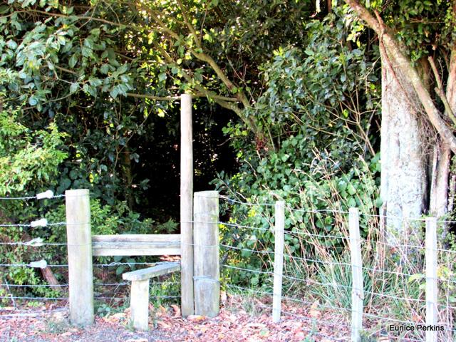 Stile Entrance to JIM Barnett Reserve
