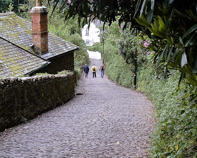 Down the lane to Clovelly
