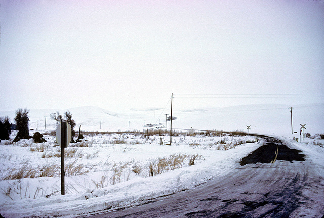 12-snowy_rd-r_adj