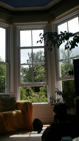 The sun was out for a few hours, so all windows opened