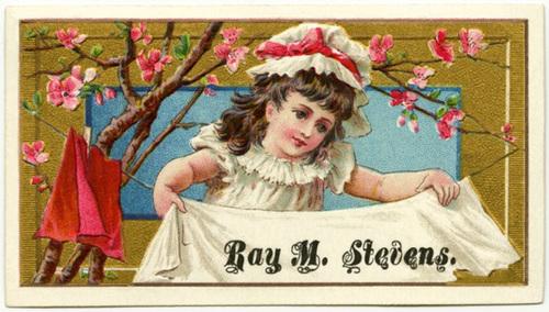 Ray M. Stevens