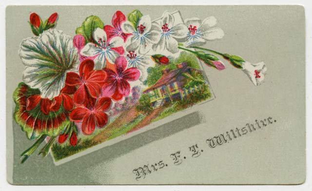 Mrs. F. T. Wiltshire