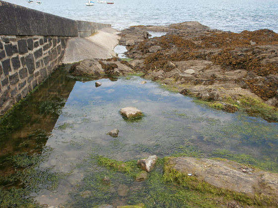 The lovely big rock pool where I was sitting near to