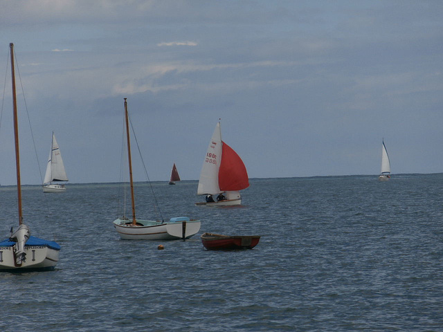 There were loads of sailing boats practicing for the regatta at the end of the month