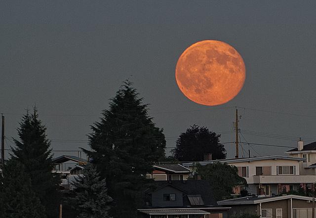 Super Moon II