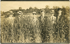 Men Out Standing in Their Field, Ohio, 1909