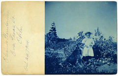 Eleanor Henderson and Her Dog in Eva, Oklahoma, October 24, 1914