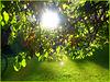 Le soleil existe, la preuve ! :o)