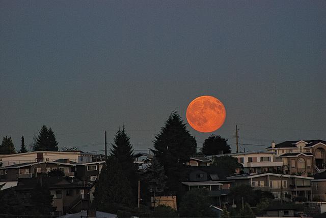 Super Moon July 12 2014