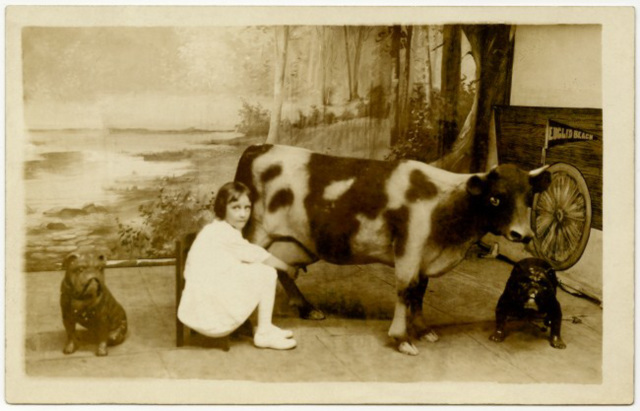 Milking the Euclid Beach Cow