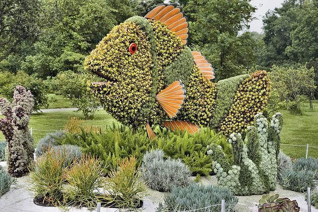 Clownfish and Sea Anemone – Mosaïcultures Internationales de Montréal, Botanical Garden, Montréal, Québec