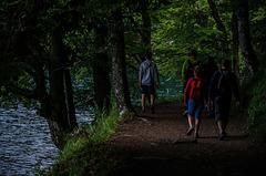 Le sentier du lac Pavin....................(on black).
