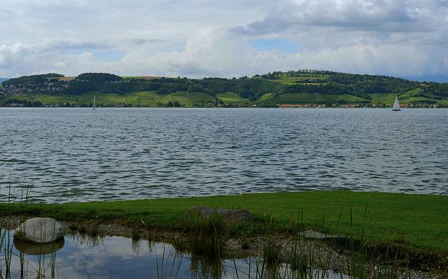 Le lac de Morat