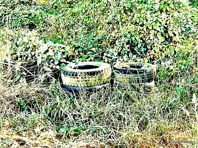 Old Abandoned Tyres