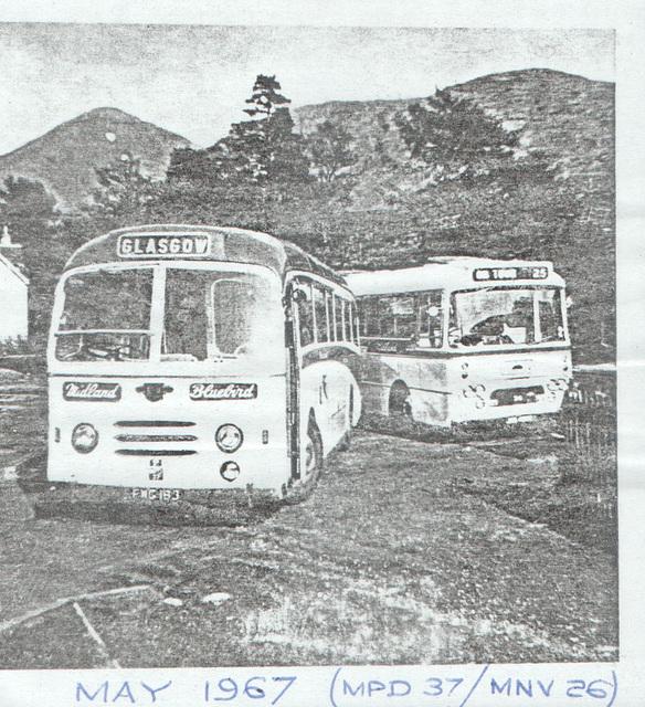 Alexander (Midland) FWG 183 and JMS 439E