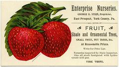 Enterprise Nurseries, East Prospect, Pa.