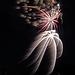 DHS Fireworks July 5 (0068)