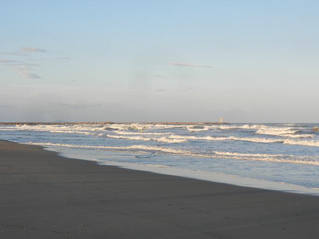 Un champ de vagues