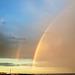 reflexes al cel i a la terra