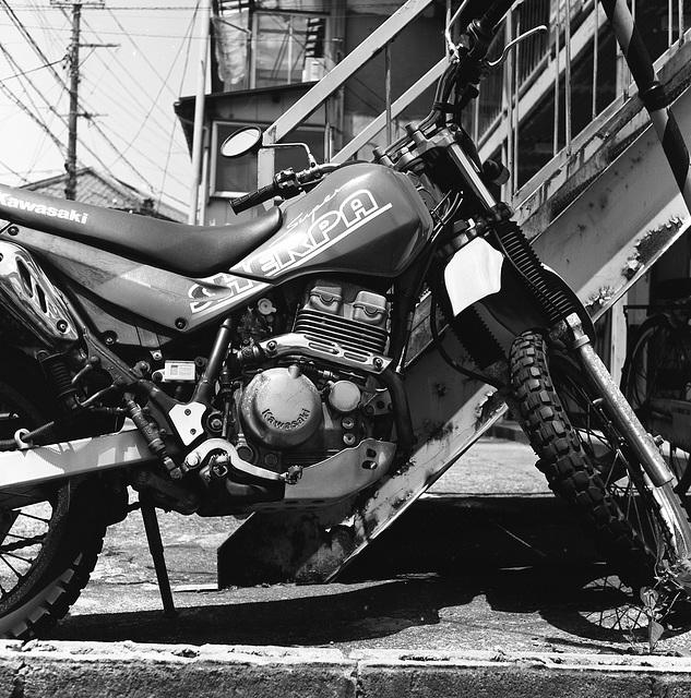 Suzuki Sherupa