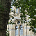 Natural History Museum (3) - 2 August 2014