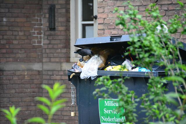 Garbage sorter