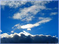 Après la pluie............BLUE PLANET