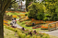 Guildford Castle gardens summer 2014