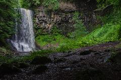 Fouiller la nature pour trouver son plaisir...............(on black).