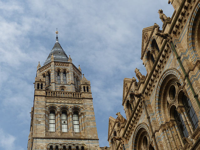 Natural History Museum (6) - 2 August 2014