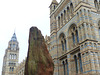 Natural History Museum (8) - 2 August 2014