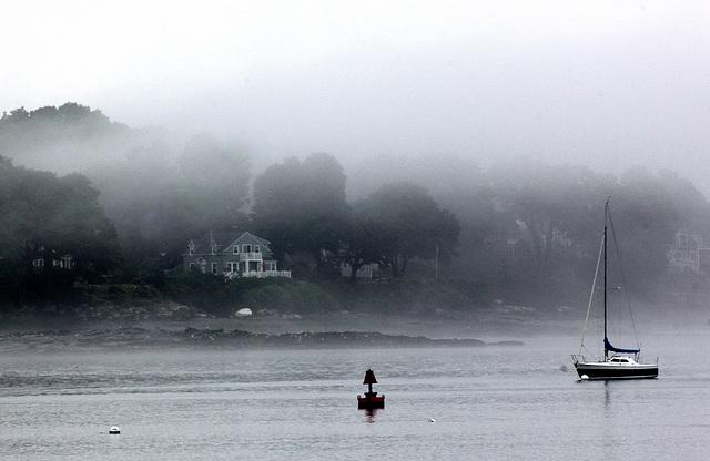 Casco Fog